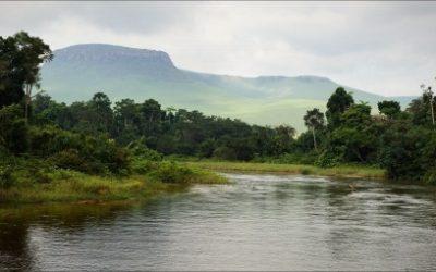 DRC: Trademark Applications